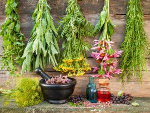 Рецепты здоровья и долголетия