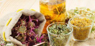 Лечение народными средствами в домашних условиях