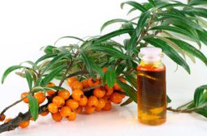Масло облепихи лечения эрозивного гастрита