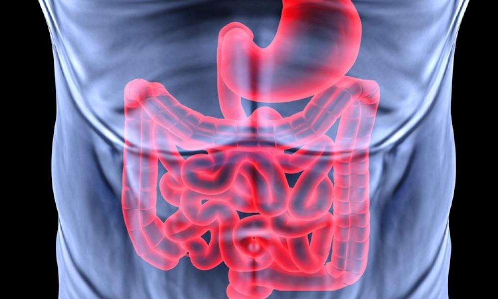 лечение народными средствами гастродуоденит