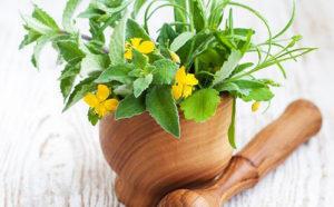 лечение гастродуоденита чистотелом лечиться нужно долго