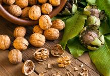 орехи полезные свойства
