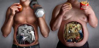 Обман про потребность в белках