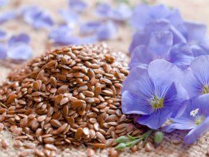 при лечении панкреатита Льняные семена