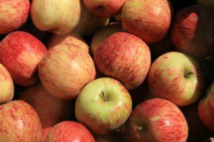 очищение кишечника без клизм кисло-сладкие яблоки