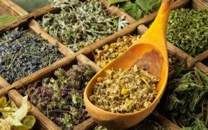 от кашля народная медицина рекомендует травы