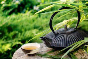 расторопша чай