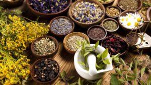для лечения бронхита Разные травы и продукты