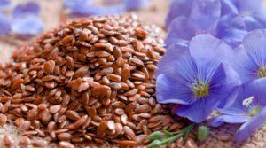 Семена льна альтернативные народные средства при гипертонии