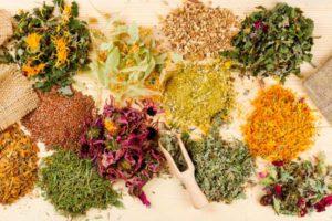 Противоопухолевые травы от миомы матки