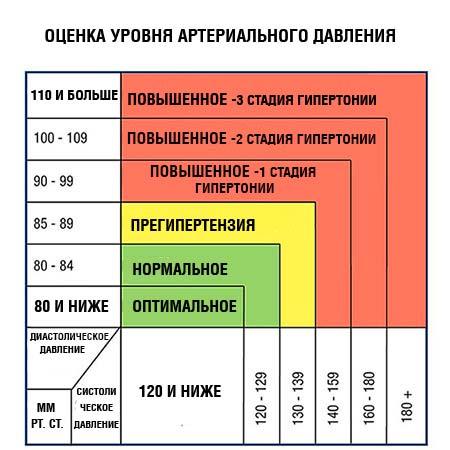 Оценка уровня артериального давления