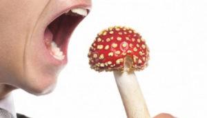 Причины и симптомы пищевого отравления