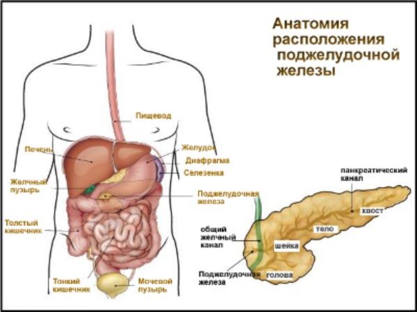 Панкреатит - лечение в домашних условиях народными 37